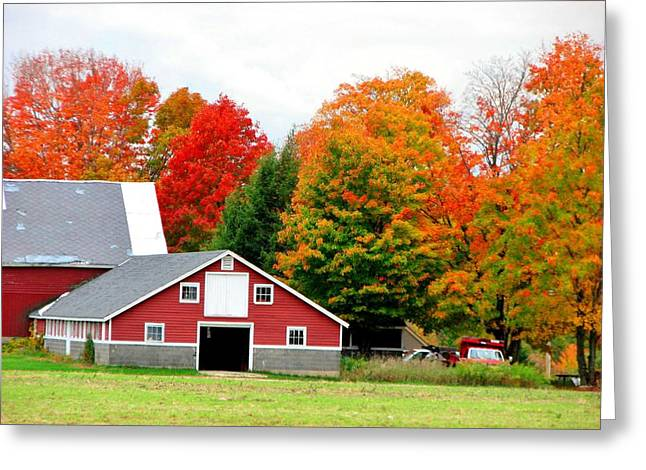 Barn Red Greeting Card