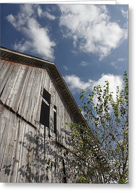 Barn To Be Wild Greeting Card