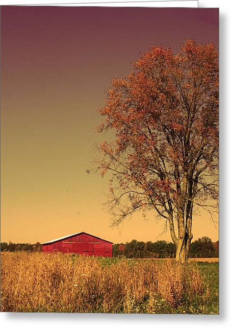 Barn Wood Greeting Card