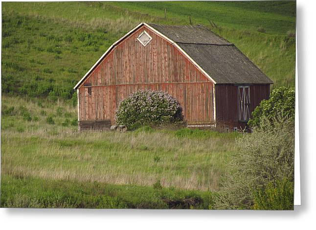 Barns Of The Palouse 6 Greeting Card by Tony and Kristi Middleton