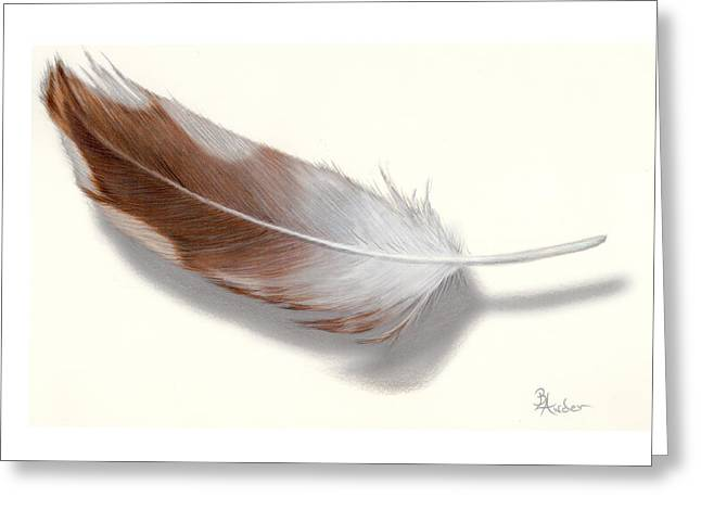 Greeting Card featuring the drawing Barred Owl Feather by Brent Ander