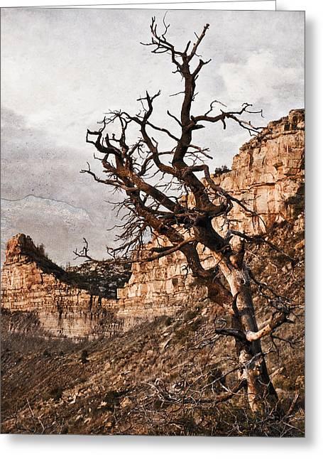 Barren Mesa Verde Greeting Card