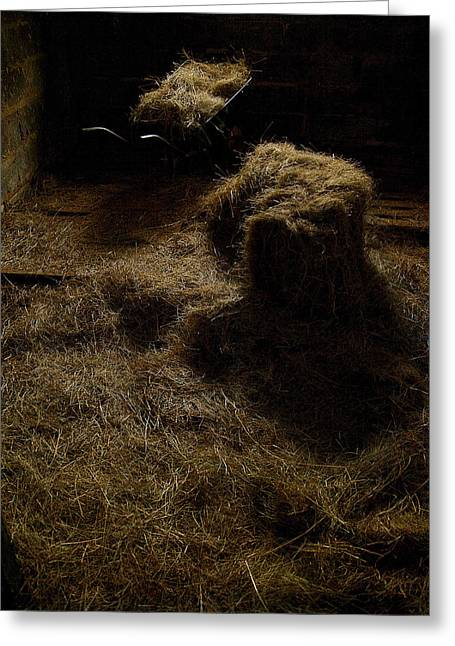 Barrow And Hay Greeting Card by Miguel Capelo