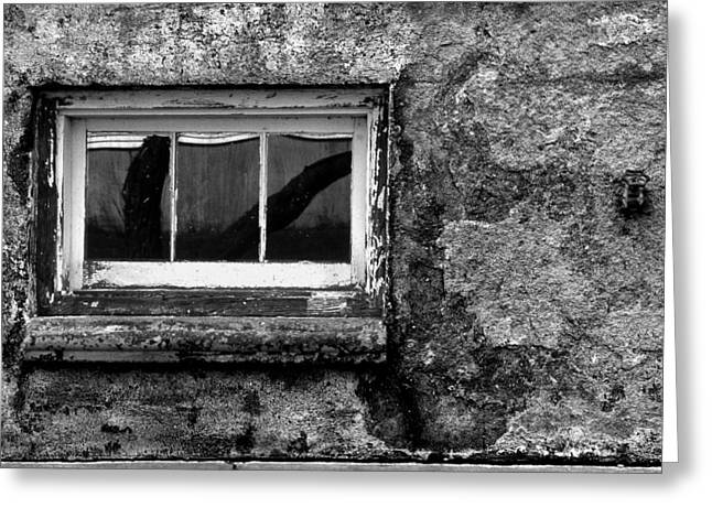 Basement Window Greeting Card by Tony Ramos