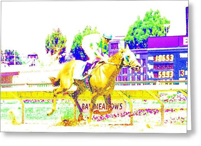 Greeting Card featuring the photograph Bay Meadows by Cynthia Marcopulos