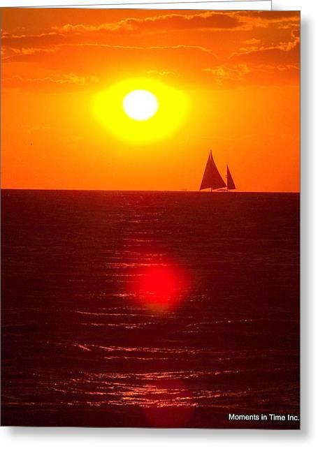 Bay Sunspike Greeting Card by Glenn McCurdy