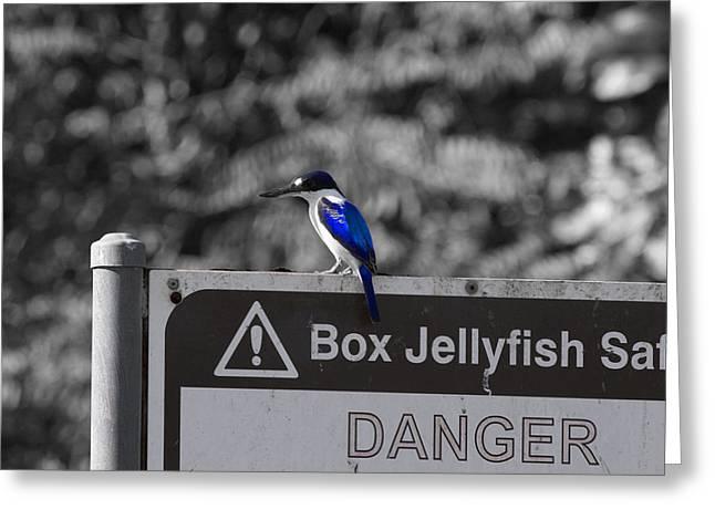 Be Warned Greeting Card by Douglas Barnard