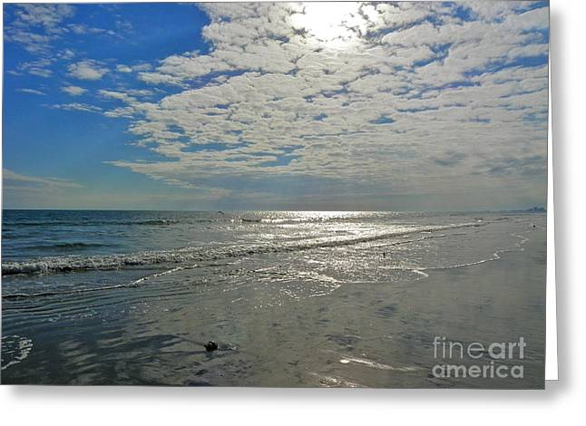 Greeting Card featuring the photograph Beach At Dawn by Eve Spring