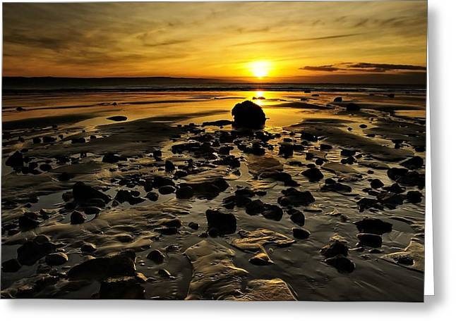 Beach Morning Glory Greeting Card by Svetlana Sewell
