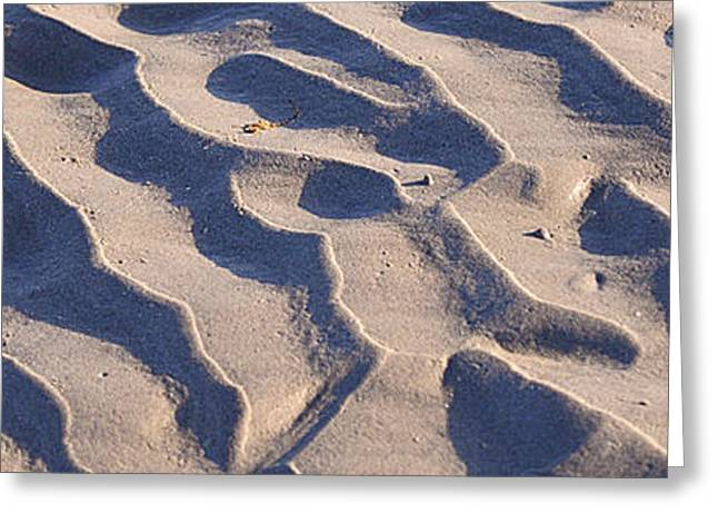 Beach Sand At Sunset Greeting Card by Phill Petrovic