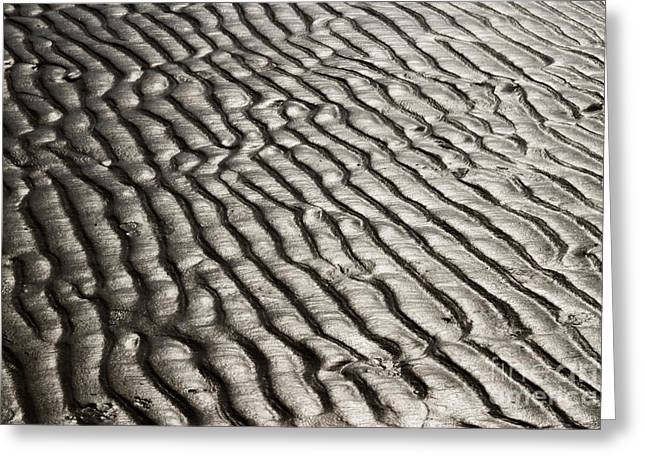 Greeting Card featuring the photograph Beach Sands by Fotosas Photography