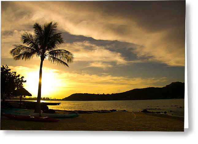 Beach Sunset With Bora Bora Palm Greeting Card by Benjamin Clark