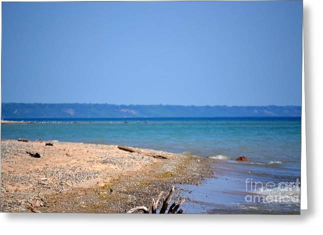Beach Views Greeting Card by Dyana Rzentkowski