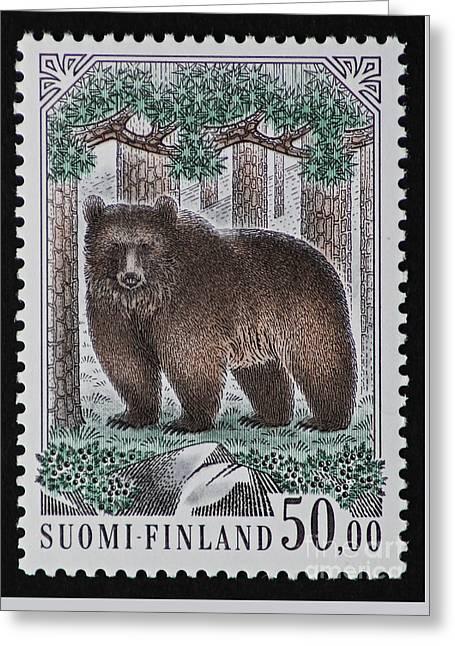 Bear Vintage Postage Stamp Print Greeting Card