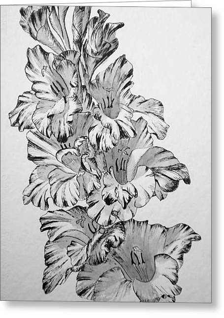 Beautiful Gladiolas Greeting Card by Eleonora Perlic