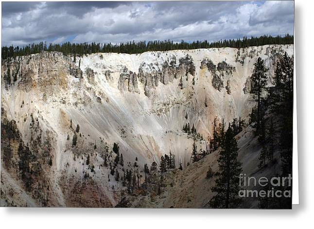 Beautiful Lighting On The Grand Canyon In Yellowstone Greeting Card by Living Color Photography Lorraine Lynch