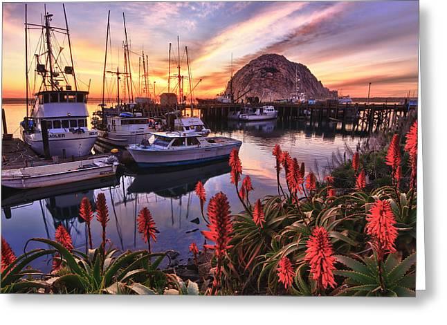 Beautiful Morro Bay Greeting Card