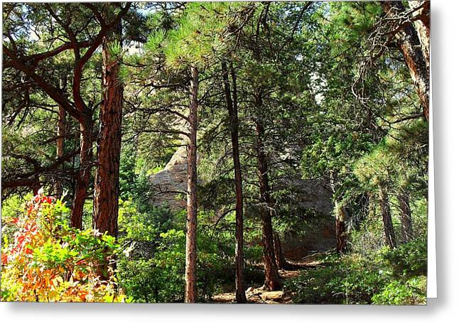 Beautiful Trail North Canyon Greeting Card by Clarice  Lakota