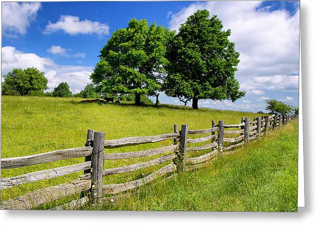 Beautiful Virginia Pasture Greeting Card