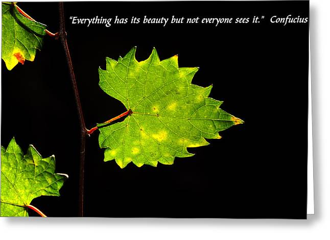 Beauty And Confucius Greeting Card