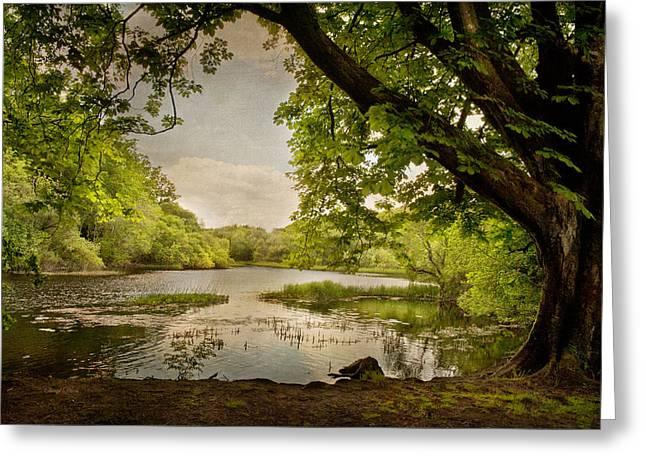 Beauty Of Ireland Greeting Card by Cheryl Davis
