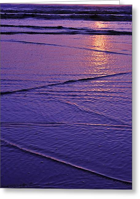 Greeting Card featuring the photograph Beauty Of The Moment by Valerie Garner