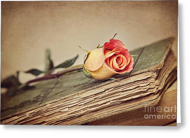 Beauty With Age Greeting Card by Cheryl Davis