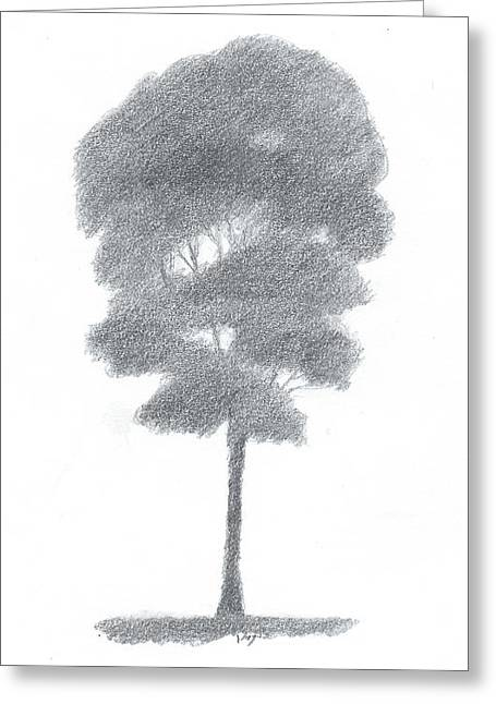 Beech Tree Drawing Number One Greeting Card by Alan Daysh