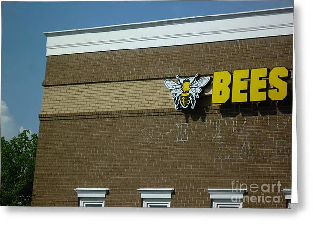 Greeting Card featuring the photograph Bees On Building by Renee Trenholm