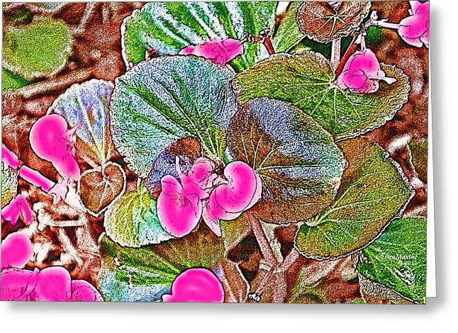 Begonia Greeting Card by EricaMaxine  Price