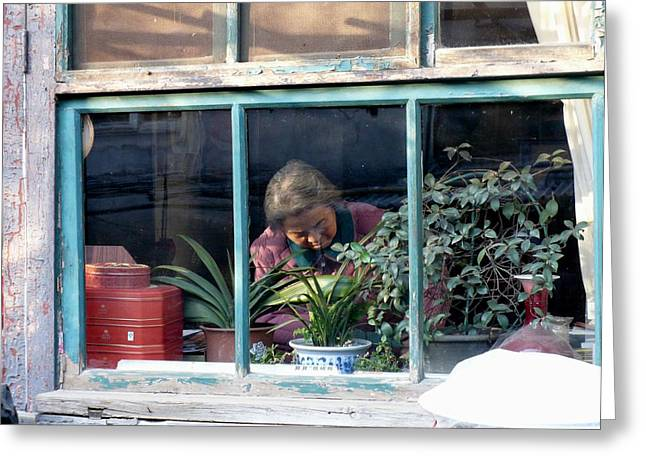 Beijing Kitchen Window Greeting Card