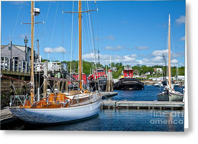 Belfast Harbor Greeting Card by Susan Cole Kelly