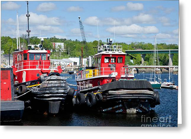 Belfast Tugboats Greeting Card by Susan Cole Kelly