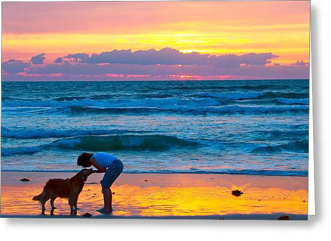 Greeting Card featuring the photograph Bella At Sunrise by Alice Gipson