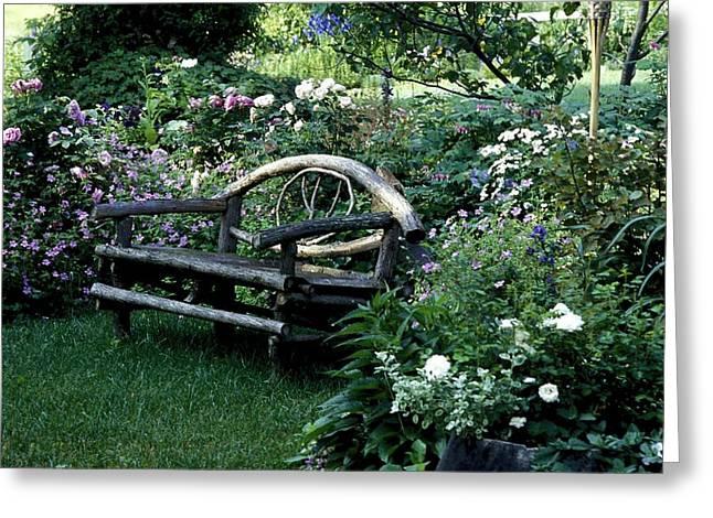Bench In Garden Greeting Card by David Chapman