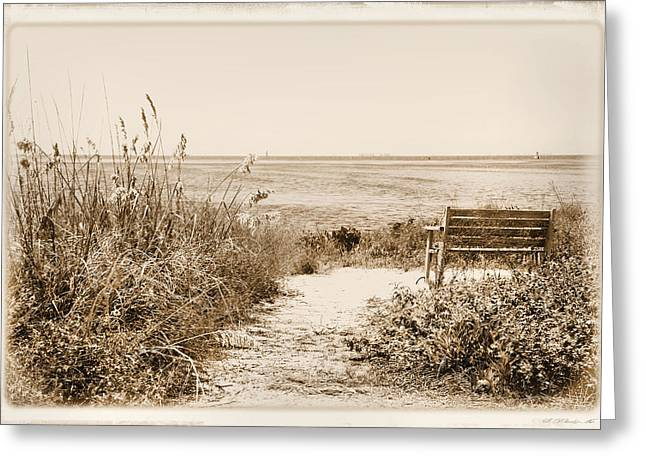 Bench With A View Greeting Card by Rosalie Scanlon