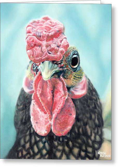 Benny The Bantam Greeting Card by Baron Dixon