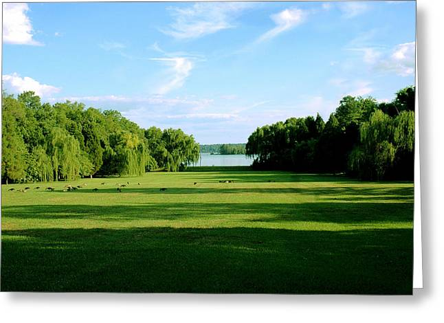 Berkeley Plantation River View Greeting Card by Faith Holt