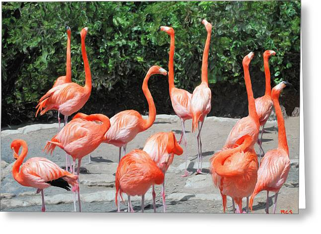 Greeting Card featuring the digital art Bermuda Flamingos by Richard Stevens