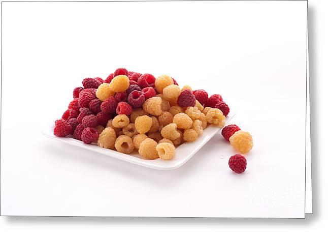 Berries Greeting Card by Catherine Lau