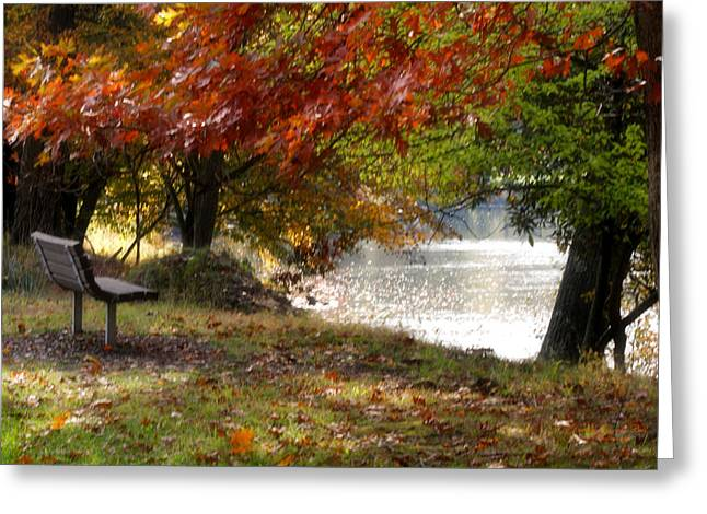 Best Seat On The Bank Greeting Card by Darlene Bell