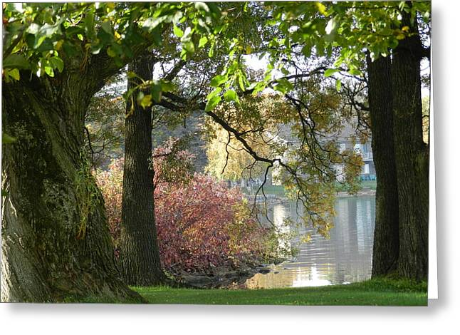 Between The Trees Greeting Card by Dennis Leatherman