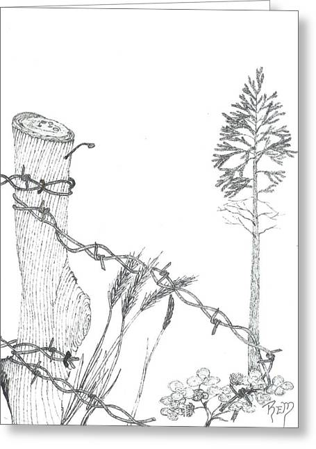 Beyond The Broken Fence - Sketch Greeting Card by Robert Meszaros