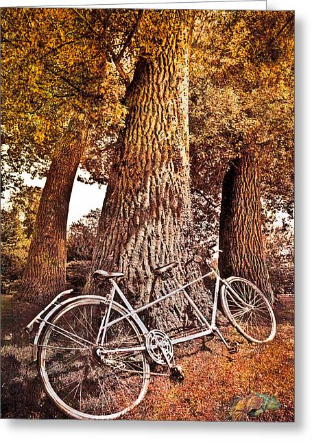 Bicycle Built For Two Greeting Card by Debra and Dave Vanderlaan