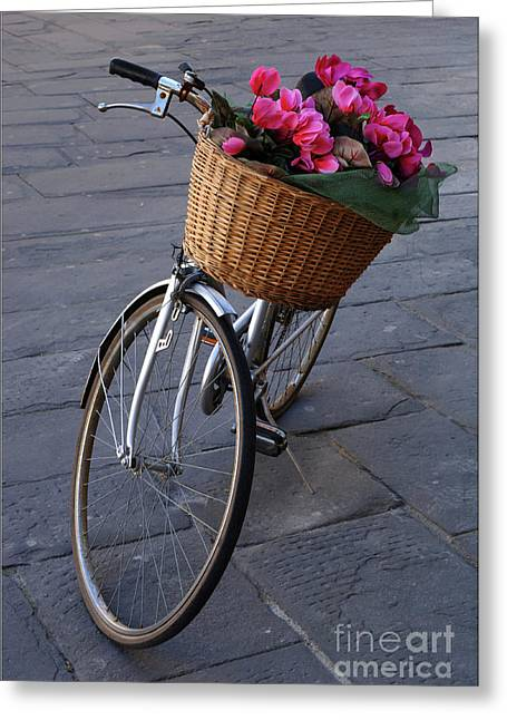Bicycle In Lucca Italy Greeting Card by Bob Christopher