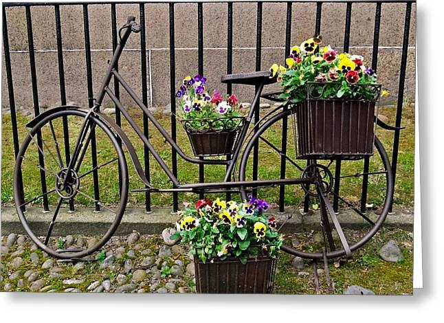Greeting Card featuring the photograph Bicycle In Salem by Caroline Stella