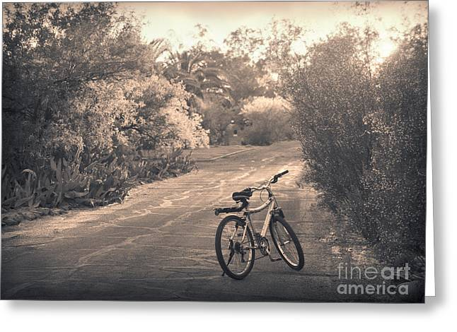 Bicycle In Tucson Greeting Card by Janeen Wassink Searles