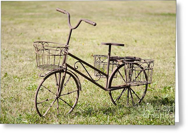 Bicycle Lawn Ornament Greeting Card by Jaak Nilson
