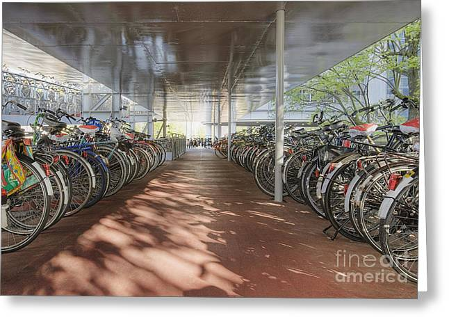 Bicycles Under A Shelter Greeting Card