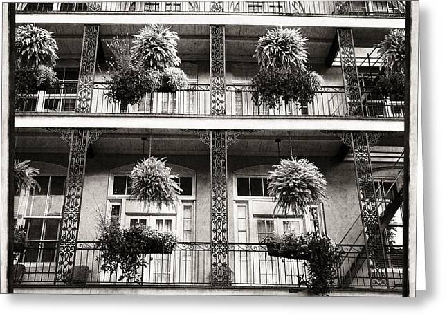 Bienville House In Black And White Greeting Card